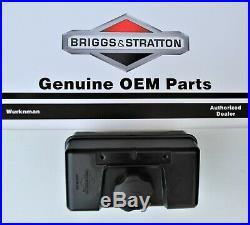Genuine OEM Briggs & Stratton 691993 Fuel / Gas Tank